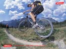 Mountain Biker Wallpaper 3